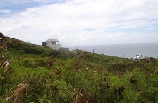 For Sale Land With Views To Ocean in Half Moon Bay